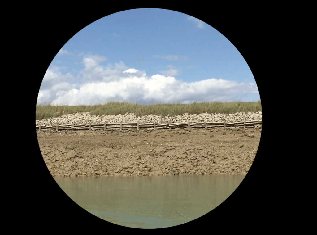 River bank in a circle shape